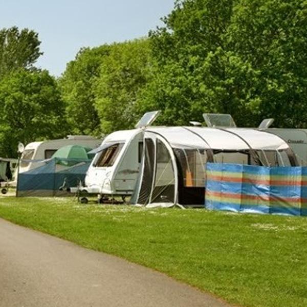British Campsite Survival Guide