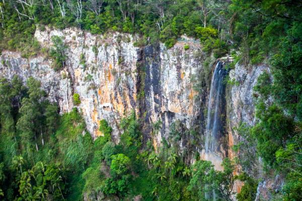 Purlingbrook Falls, Springbrook National Park